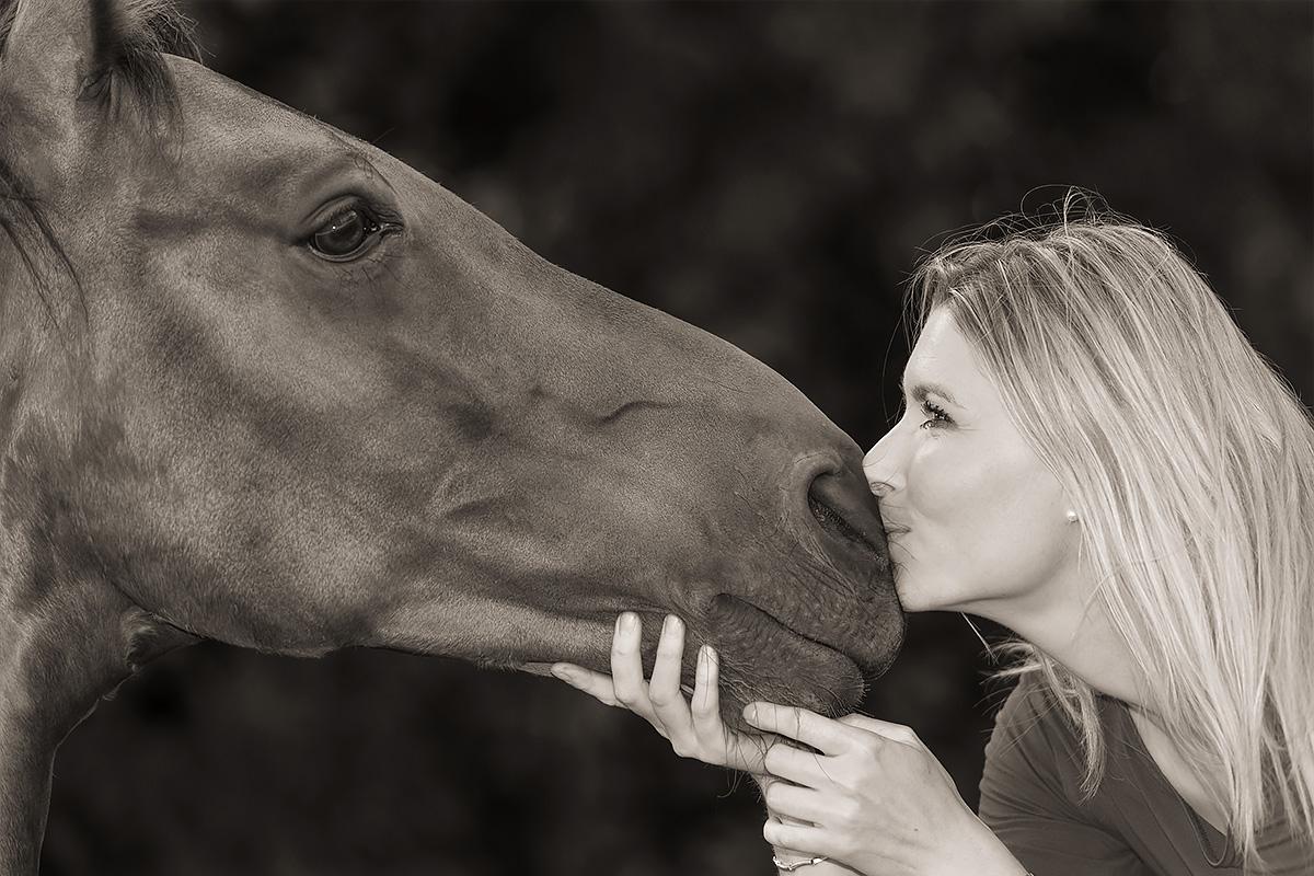 Portrait- / Tierfotografie Mayen