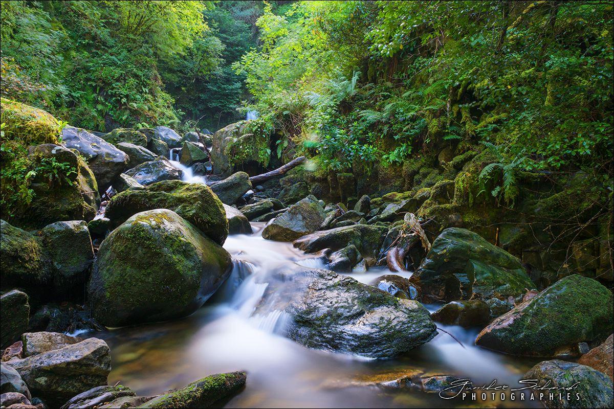 Killarny/Torc Wasserfälle